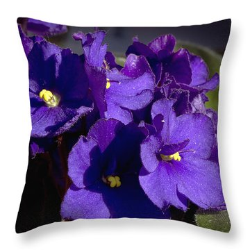 Throw Pillow featuring the photograph African Violets by Phyllis Denton