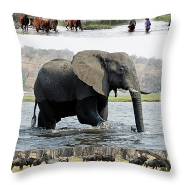 African Wildlife Montage - Elephant Throw Pillow