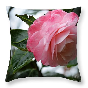 After A March Rain Throw Pillow