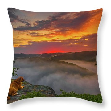After A Rainy Night.... Throw Pillow