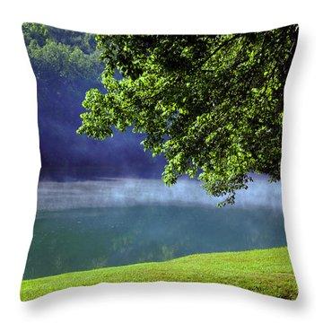 After A Warm Summer Rain Throw Pillow by Susanne Van Hulst