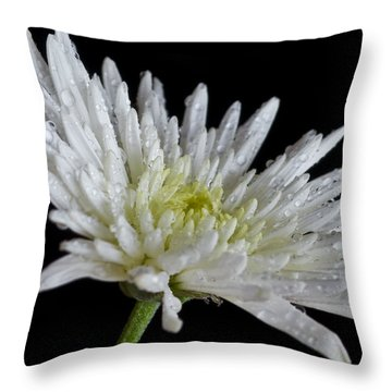 After Rain Throw Pillow by Svetlana Sewell