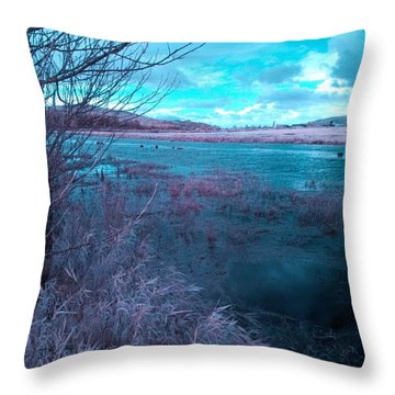 Throw Pillow featuring the photograph After Storm Surrealism by Chriss Pagani