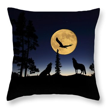 After Sunset Throw Pillow by Shane Bechler