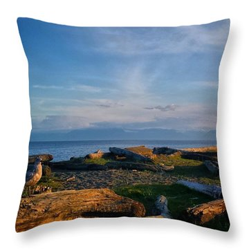 After Supper Relaxing At The Lagoon! Throw Pillow