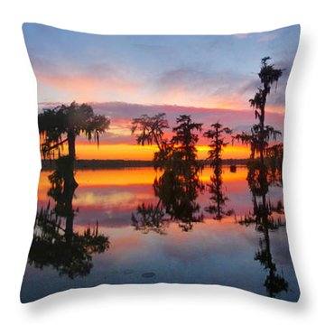 After The April Shower Throw Pillow