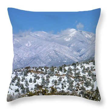After The Blizzard Throw Pillow
