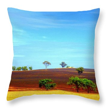 After The Burn Throw Pillow