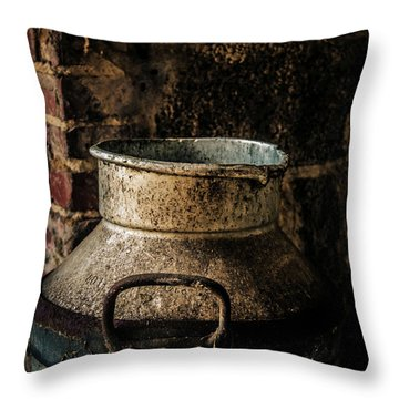 After The Cows Have Gone Throw Pillow