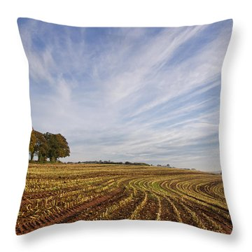 After The Harvest Throw Pillow