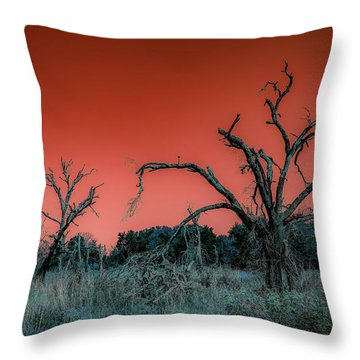After The Hurricane Wars Throw Pillow