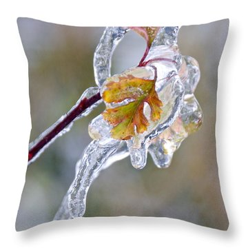 After The Ice Storm Throw Pillow