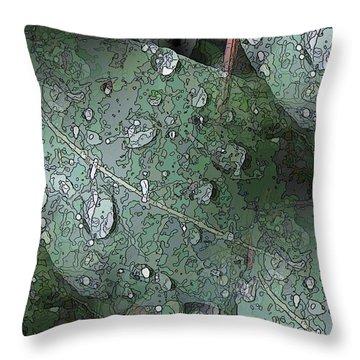 After The Rain 4 Throw Pillow by Tim Allen