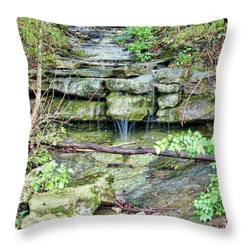 Throw Pillow featuring the photograph After The Rain by Cricket Hackmann