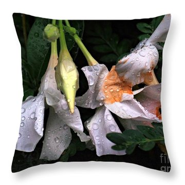 After The Rain - Flower Photography Throw Pillow by Miriam Danar