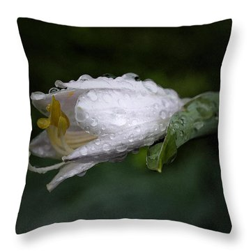 After The Rain - Hosta Macro Throw Pillow