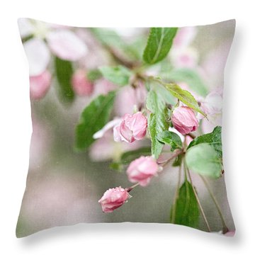 After The Rain Throw Pillow by Lisa Russo