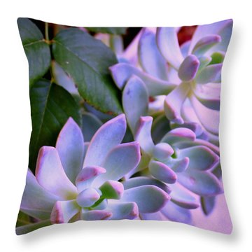 After The Rain Throw Pillow by M Diane Bonaparte