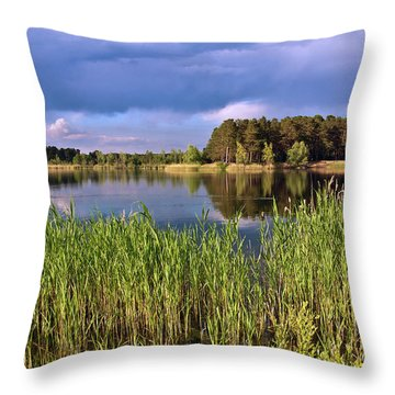 After The Rain Poetry Throw Pillow