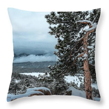 After The Snow - 0629 Throw Pillow