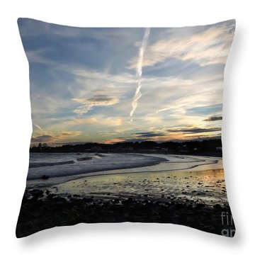 After The Storm In 2016 Throw Pillow