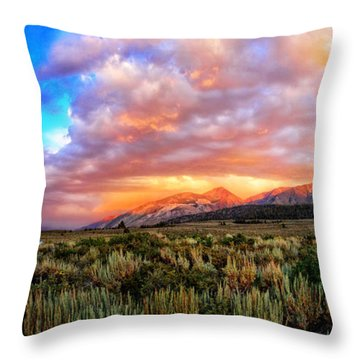 After The Storm Panorama Throw Pillow