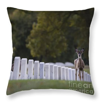 After Visiting Hours Throw Pillow by Andrea Silies
