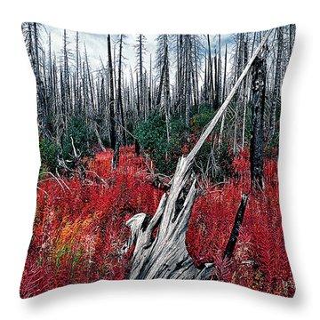 Afterburn Throw Pillow