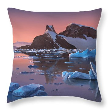 Afterglow Lemarie Channel Antarctica Throw Pillow