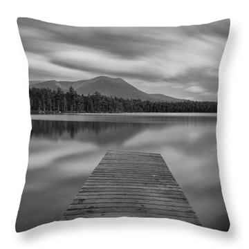 Afternoon At Daciey Pond Throw Pillow