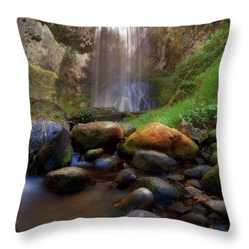 Afternoon Delight At Upper Bridal Veil Falls Throw Pillow by David Gn