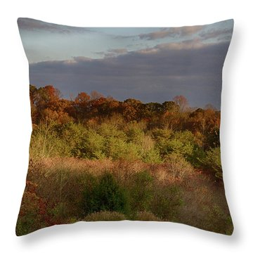 Afternoon Glow In Hocking Hills Throw Pillow