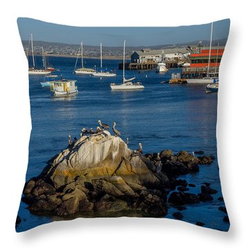 Afternoon Hangout Throw Pillow