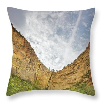 Afternoon In Boynton Canyon Throw Pillow