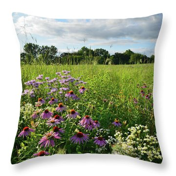 Afternoon In Moraine Hills State Park Throw Pillow