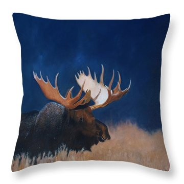 Afternoon Light. Throw Pillow