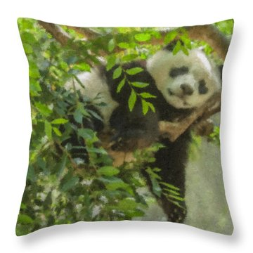 Afternoon Nap Baby Panda Throw Pillow