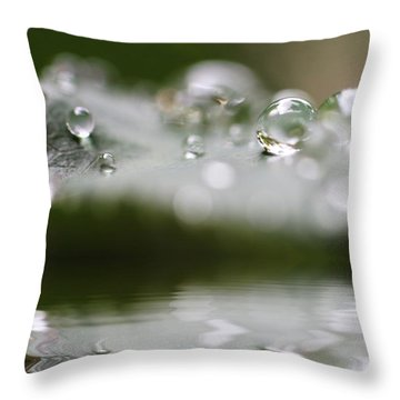 Afternoon Raindrops Throw Pillow