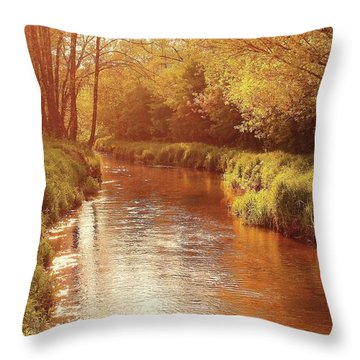 Sunny Afternoon Throw Pillow by Slawek Aniol