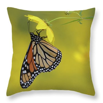 Throw Pillow featuring the photograph Afternoon Snack by Ann Bridges