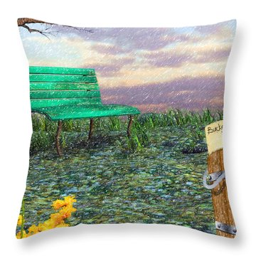 Afternoon Snooze Throw Pillow