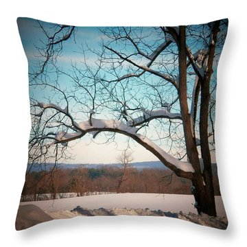 Afterr The Blizzard Throw Pillow