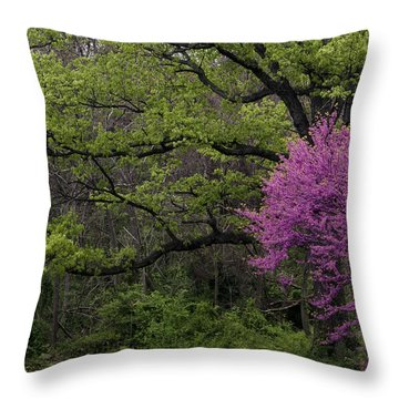 Throw Pillow featuring the photograph Afton Virginia Spring Red Bud by Kevin Blackburn