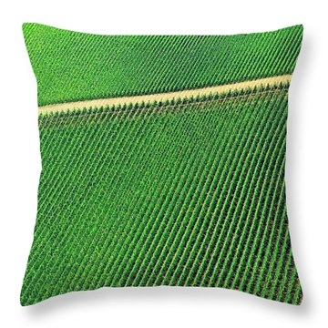 Ag Road Throw Pillow
