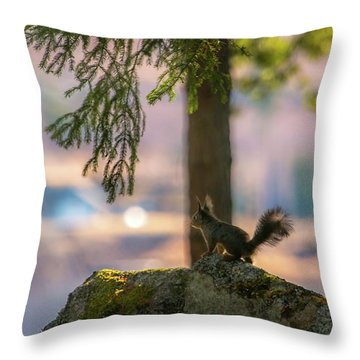 Against Brighter Times Throw Pillow
