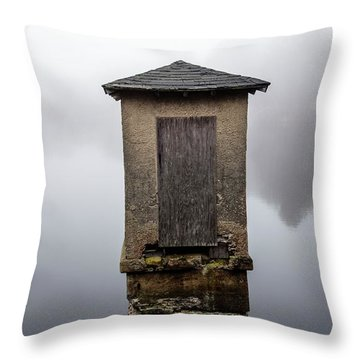Throw Pillow featuring the photograph Against The Fog by Karol Livote