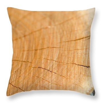 Against The Grain Throw Pillow by Christina Rollo
