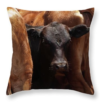 Throw Pillow featuring the photograph Against The Tide by Roger Mullenhour