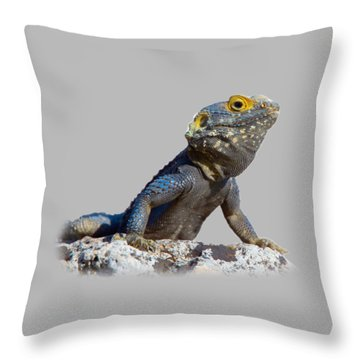 Agama Basking On A Rock T-shirt Throw Pillow