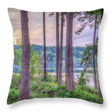 Agate Passage View Throw Pillow by Spencer McDonald